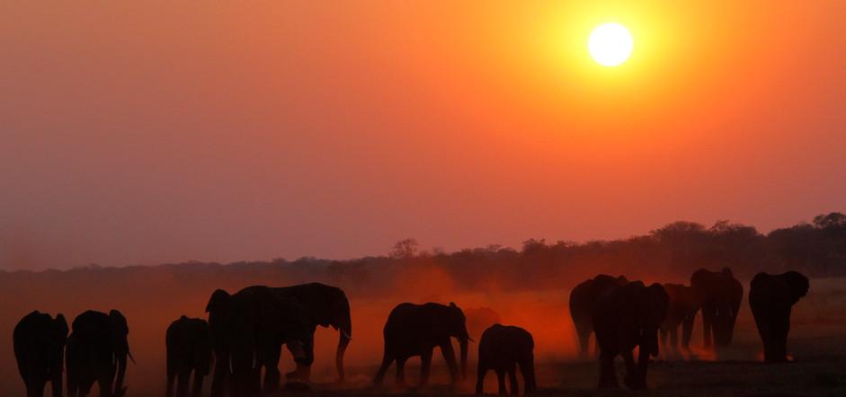 eles sunset.jpg