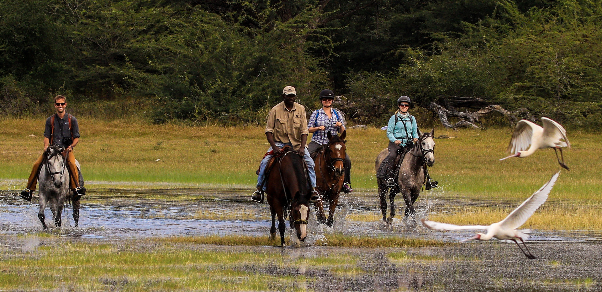 Riding at Mbogo Pan on the Ngamo Plains.