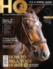 horses, magazine, feature, hwange horseback safaris