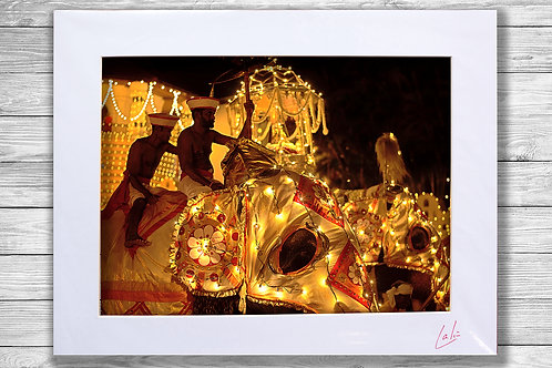 Sacred Tooth Relic (Matted Print)