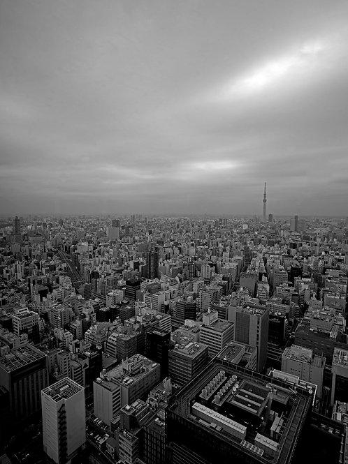 Tokyo buildings horizon