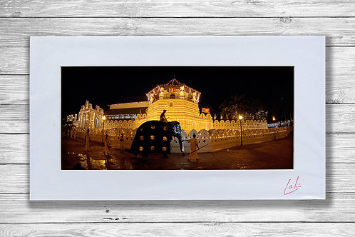 Kandy Temple and Elephant (Matted Print)