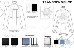 Transcendence Technical