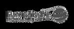 Logo_Europaeische_edited.png