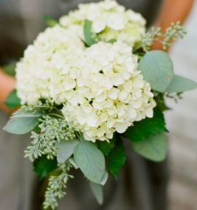 Hydrangeas and Seeded Eucalyptus