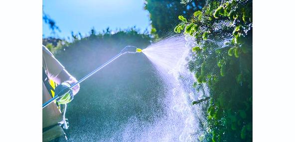 Pesticide spray .jpeg