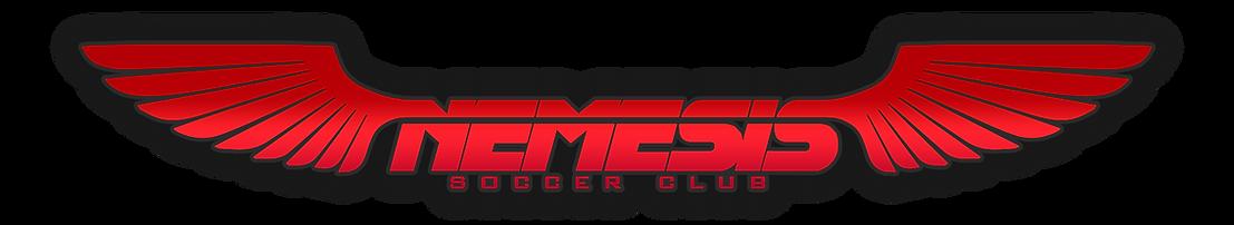 2020 demoshere Logo header 2020.png