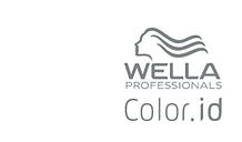 Logo_Wella_Color.id_(grau).png