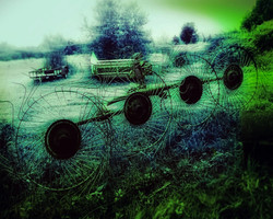 Hayrack in the Yard