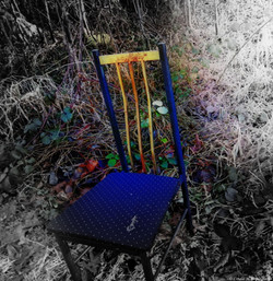 CHAIR IN THE FOREST