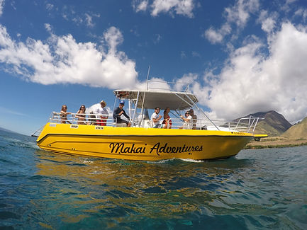 Maui Whale Watch and Snorkel Tours