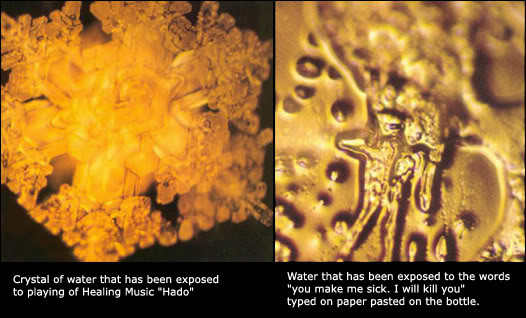 Masaru Emoto Hidden Messages in Water 2