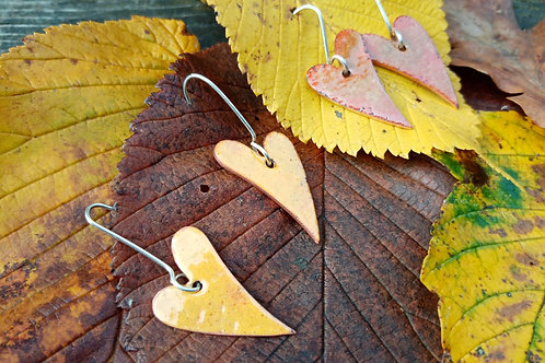 enamel earrings  with silver earring hoops