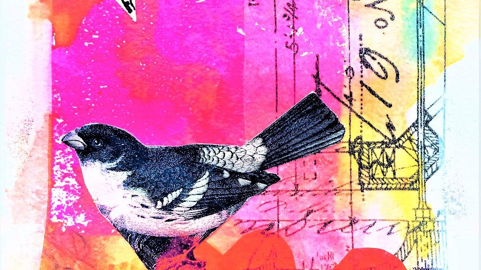 Natalie's Bird