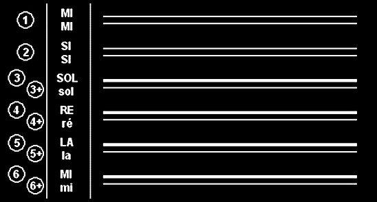 12 cordes image 1.jpg