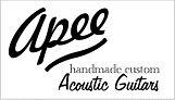 Apee guitare.jpg