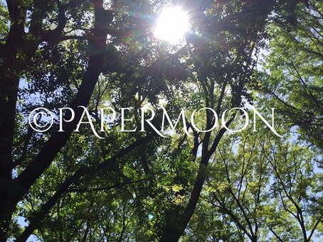 【ライトセラピー 29 】早起きのための3つのコツ その2 | PAPERMOON ライトセラピーレッスン 東京自由が丘