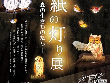 和紙の灯り展 ー森の生きものたちー | 手作りライト照明教室 PAPERMOON(東京 自由が丘)