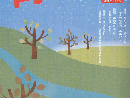 『育てる』12月号に掲載されました | 手作りライト照明教室 PAPERMOON(東京 自由が丘)