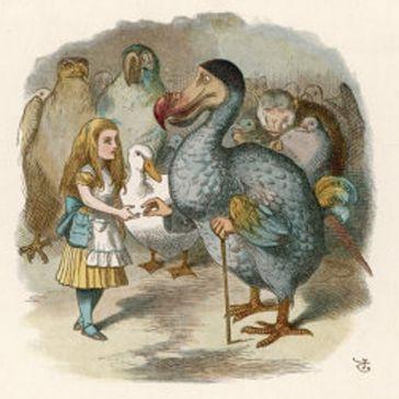 psicoterapia pájaro dodo