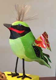 Sundrop Bird: Mr. Phil