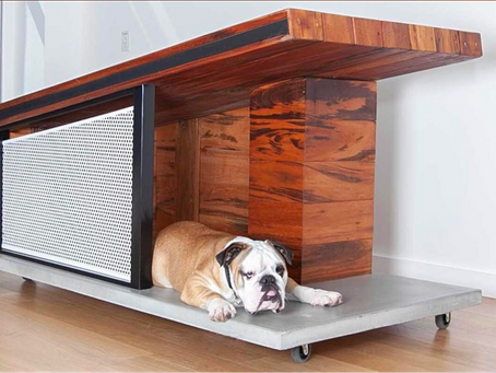 Architectural dog house photo shoot for charity auction