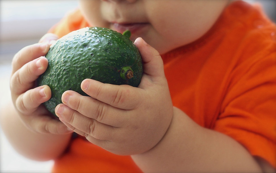 avocado-1476493_1280.jpg
