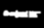 high-res-_Co-ordSport logo-Distibution-b