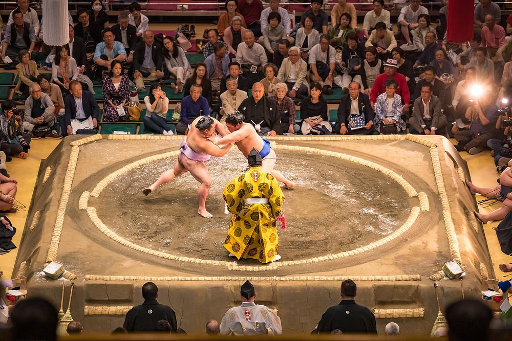 Sumo Wrestling photography