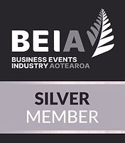 BEIA Silver Member Logo 2021.jpg
