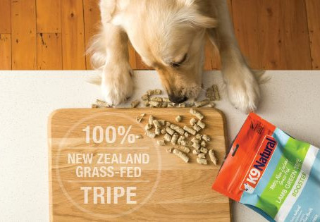 Why give your dog freeze dried food?