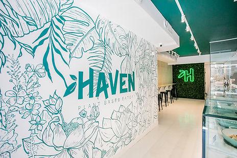 Haven environment.jpg