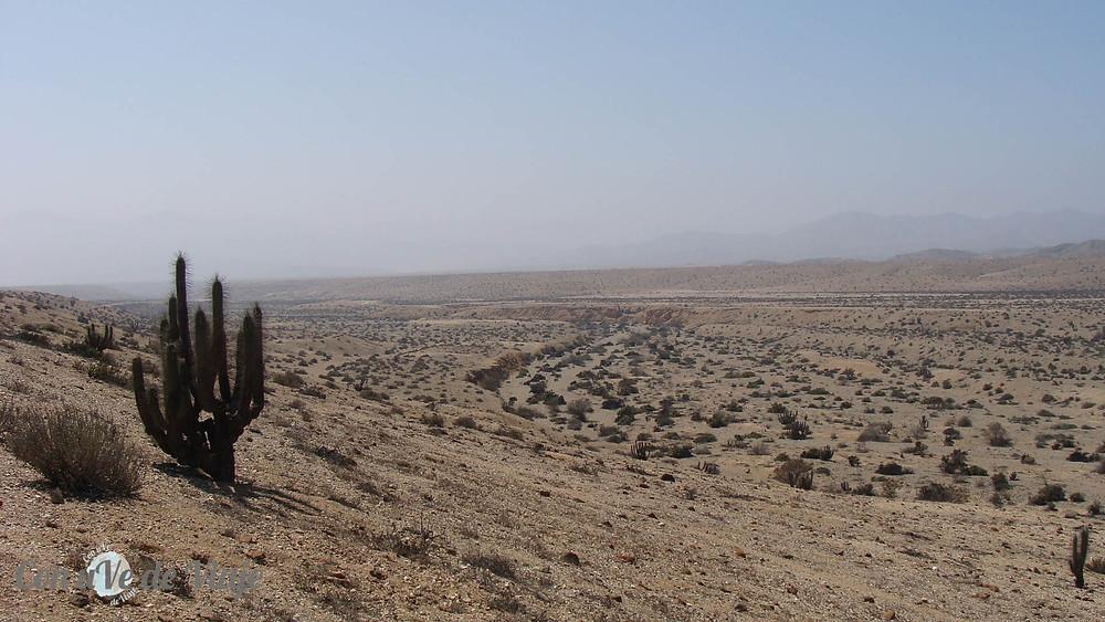 Parque Nacional Llanos del Challe