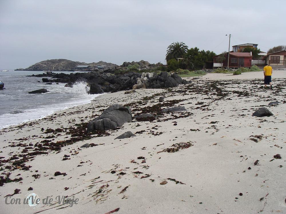 Bahía Inglesa Chile