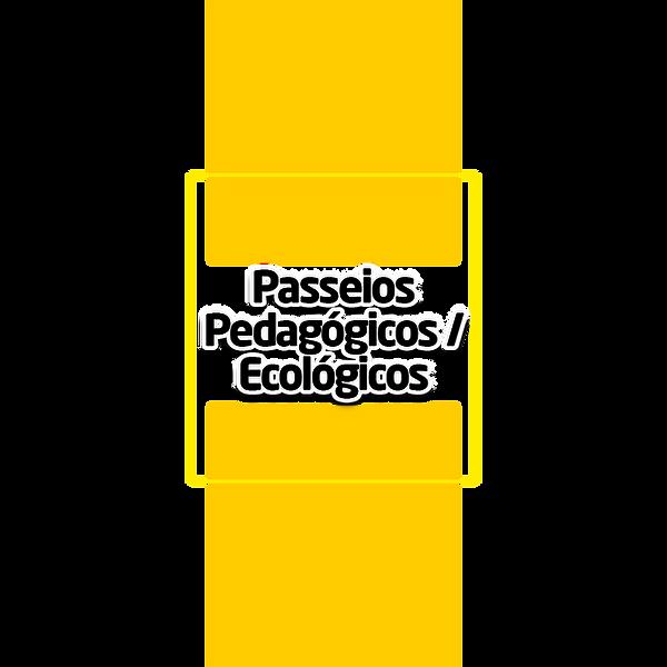 passeios-pedagogicos-ecologicos.png
