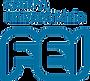 logo-FEI_edited.png