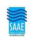 20170904-logo-saae.jpg
