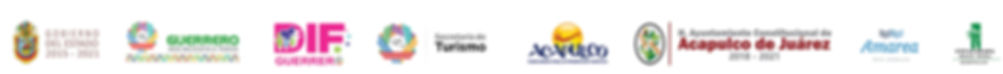 LOGOS 2019 tira sitio web.jpg