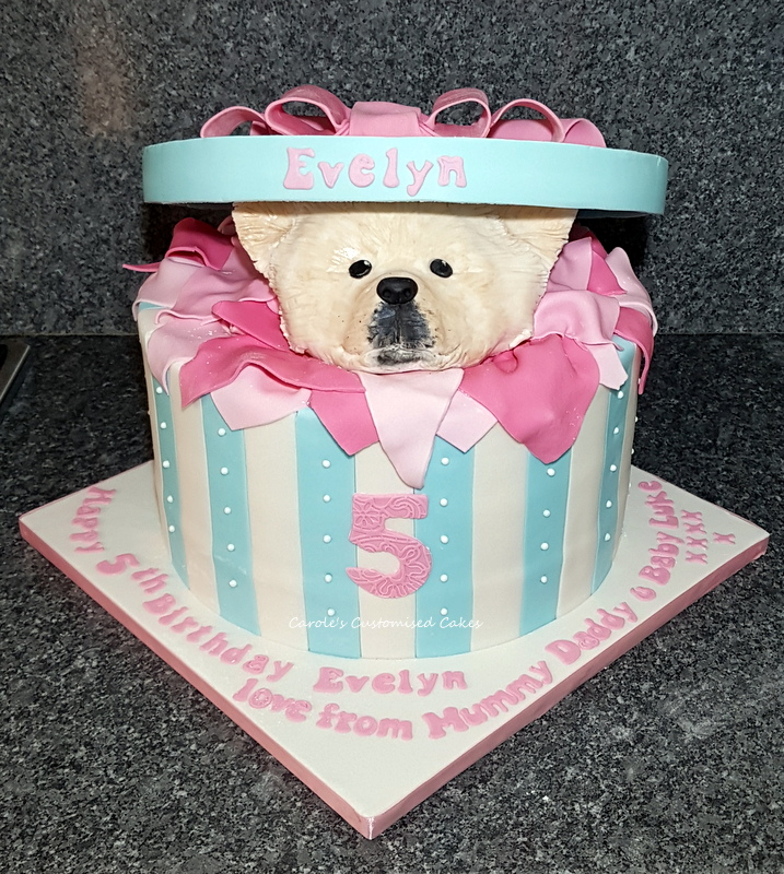 Pomeranian dog in a box cake