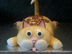 Fat cat cake