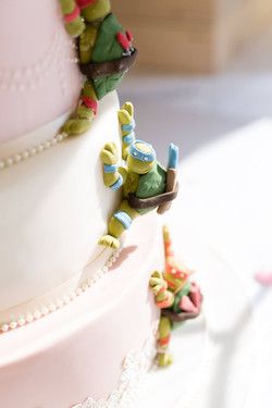 Climbing TMNT cake toppers