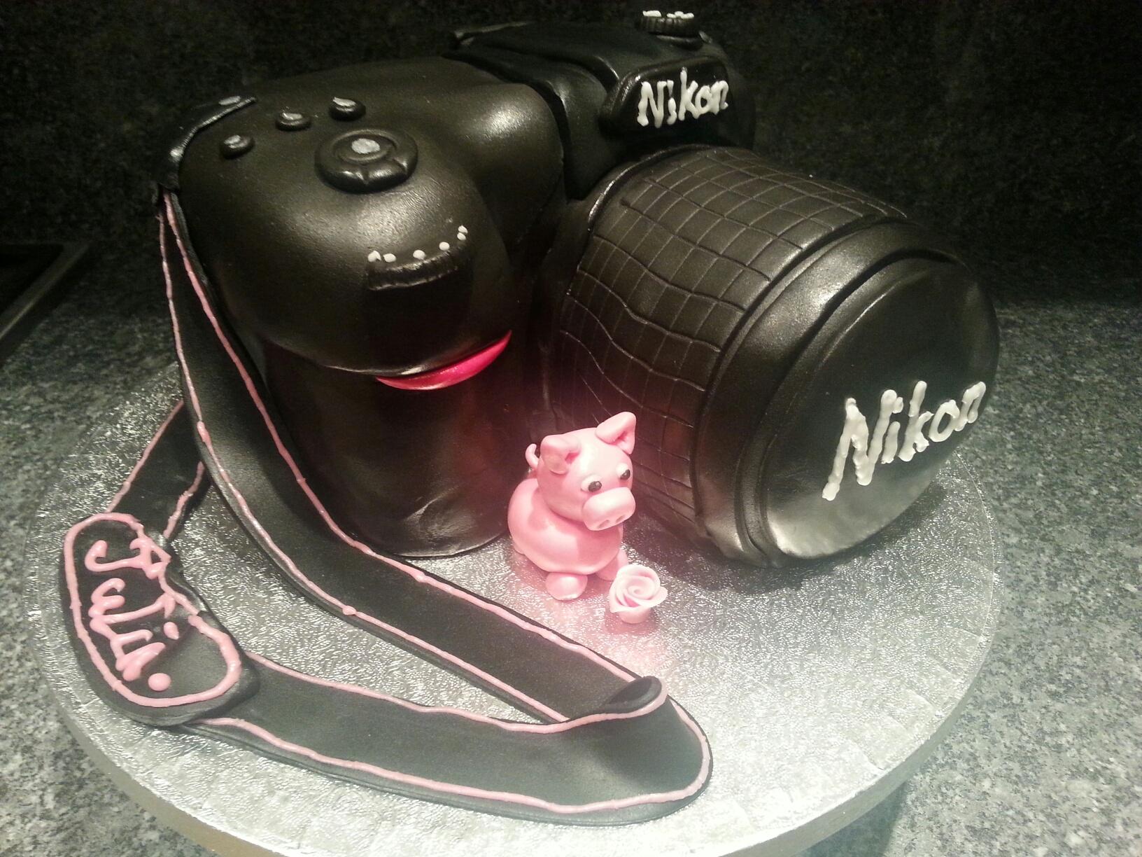 Camera and pig cake