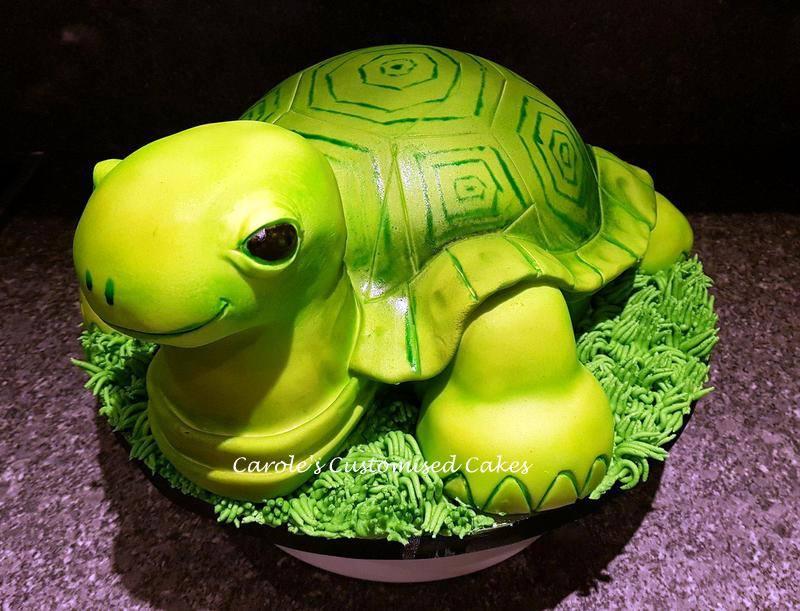 tortoise birthday cake