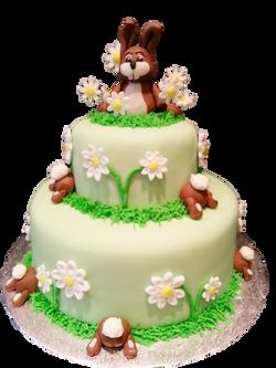 rabbit and daisy cake