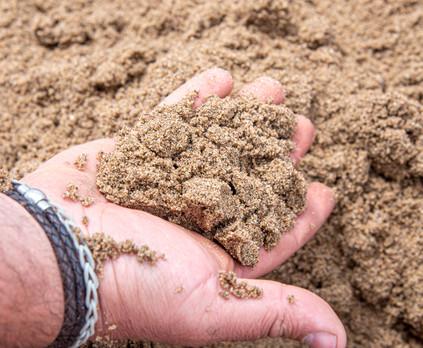 DD Aggregates Holme Sand.jpeg