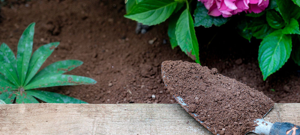 DDAggregates_Photography_Top_Soil_Garden