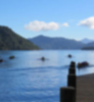 Swift Coastal Rowing Quads Marlborough S