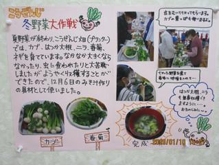 冬野菜大作戦
