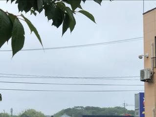 昨日は突然の大雨でしたが