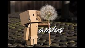 Wishes #10.jpg